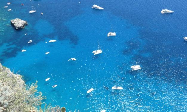 Ankarvikar mot Amalfi